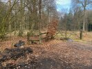 Exactly opposite a sign that says 'woodland for sale'